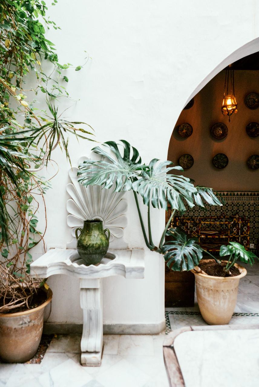 Tanger / Sarah Aubel